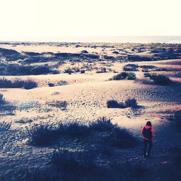 Ten Mile Dunes